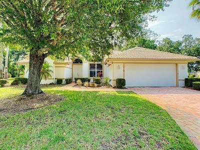 Plantation Bay Single Family Home For Sale: 716 Dolphin Head Lane