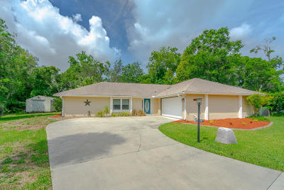 Port Orange Single Family Home For Sale: 6134 Del Mar Drive