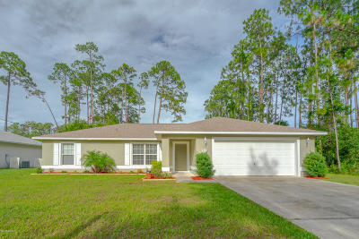 Palm Coast Single Family Home For Sale: 78 Ryberry Drive