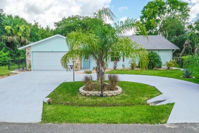 Palm Coast Single Family Home For Sale: 5 Cedarfield Court
