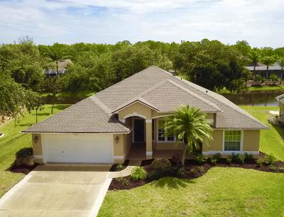 Port Orange Single Family Home For Sale: 1737 Creekwater Boulevard