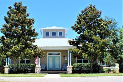 New Smyrna Beach Single Family Home For Sale: 2665 Old Smyrna Trail