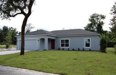 Volusia County Single Family Home For Sale: 420 Hickory Avenue