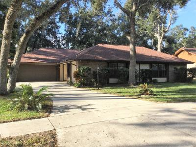 Port Orange Single Family Home For Sale: 6179 Yellowstone Drive