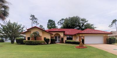 Palm Coast Single Family Home For Sale: 92 Westchester Lane