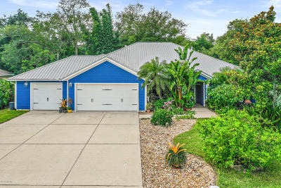 Port Orange Single Family Home For Sale: 610 Renner Road
