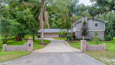 Ormond Beach Single Family Home For Sale: 10 Arrowhead Drive
