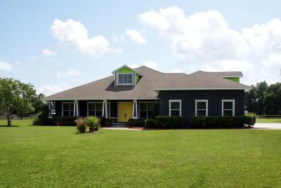 Deland Single Family Home For Sale: 2901 Trevor Lane