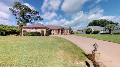 Palm Coast Single Family Home For Sale: 24 Fairhill Lane