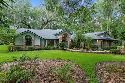 Ormond Beach Single Family Home For Sale: 3902 Tano Drive