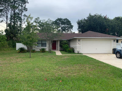 Palm Coast Single Family Home For Sale: 141 Westrobin Lane