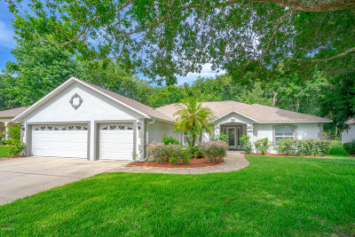 Port Orange Single Family Home For Sale: 3735 Sunrise Oaks Drive