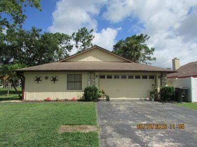Daytona Beach Single Family Home For Sale: 136 Snowgoose Court