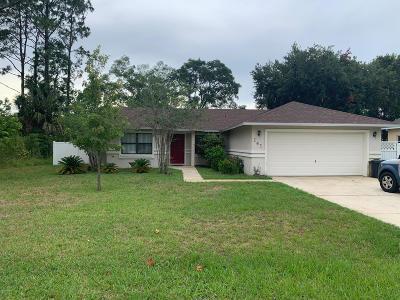 Palm Coast Single Family Home For Sale: 141 Westrobin Lane