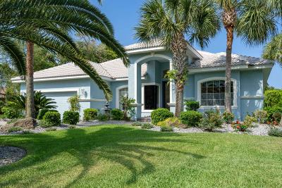 Palm Coast Single Family Home For Sale: 25 Flagship Drive