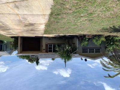Ormond Beach Single Family Home For Sale: 46 Palmetto Drive