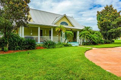 New Smyrna Beach Single Family Home For Sale: 2520 Glencoe Farms Road