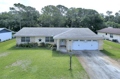 Port Orange Single Family Home For Sale: 1022 Wexford Way