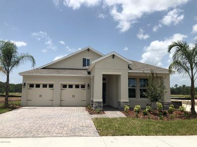 New Smyrna Beach Single Family Home For Sale: 210 Venetian Palms Boulevard