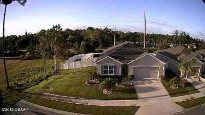 New Smyrna Beach Single Family Home For Sale: 2600 Star Coral Lane
