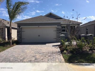 New Smyrna Beach Single Family Home For Sale: 207 Caryota Court