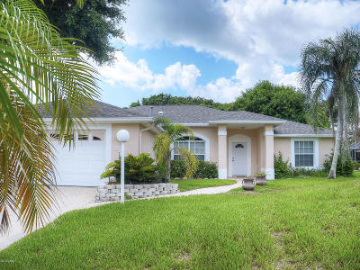 New Smyrna Beach Single Family Home For Sale: 821 E 21st Avenue