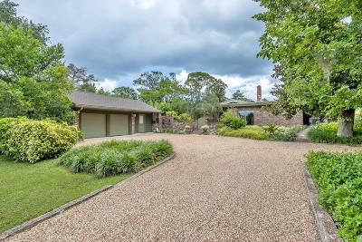 Ormond Beach Single Family Home For Sale: 331 Riverside Drive