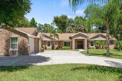 Ormond Beach Single Family Home For Sale: 118 Oak Lane