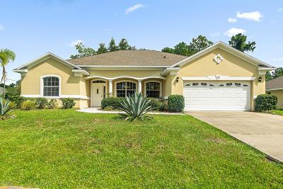 Palm Coast Single Family Home For Sale: 55 Woodbury Drive