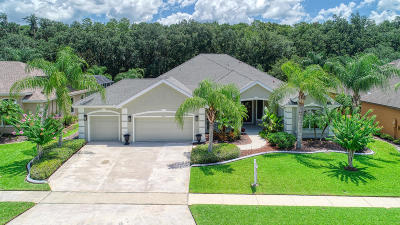Port Orange Single Family Home For Sale: 6717 Merryvale Lane