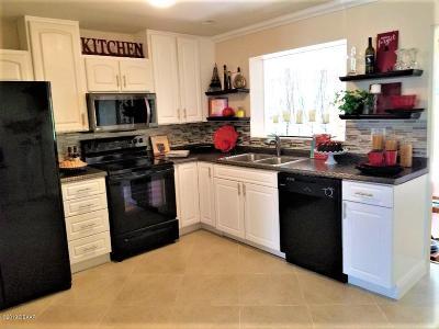 Ormond Beach FL Single Family Home For Sale: $249,900