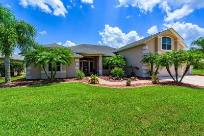 Port Orange Single Family Home For Sale: 1718 Destino Court
