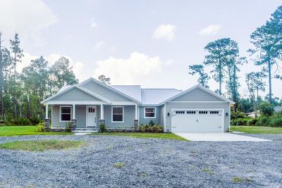 New Smyrna Beach Single Family Home For Sale: 4165 Budd Road