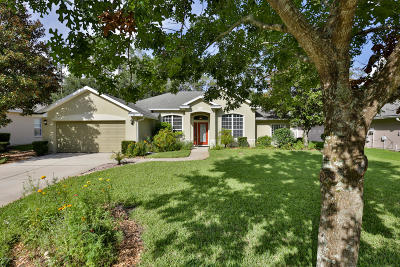 Ormond Beach Single Family Home For Sale: 29 Black Creek Way