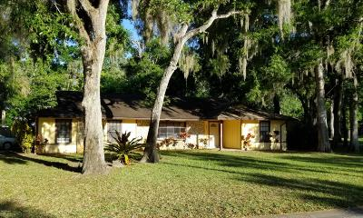 Port Orange Single Family Home For Sale: 890 Sugar House Drive