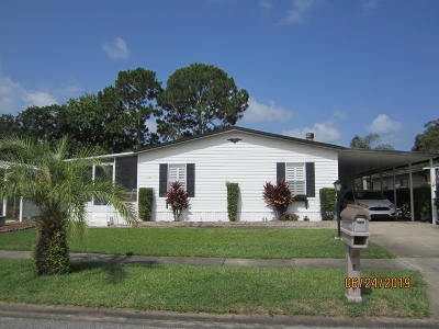 Port Orange Single Family Home For Sale: 731 Indian Hill Drive