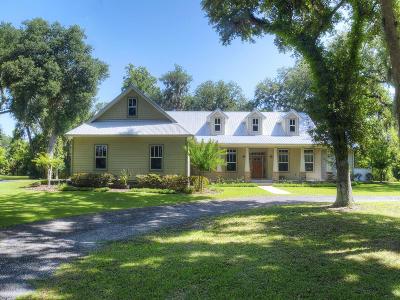 Edgewater Single Family Home For Sale: 3125 Hoke Drive