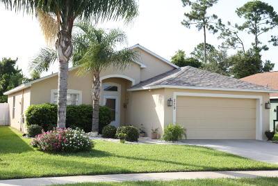 Daytona Beach Single Family Home For Sale: 379 Dahoon Holly Drive
