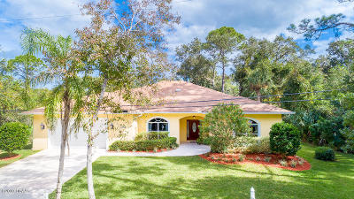 New Smyrna Beach Single Family Home For Sale: 2945 Sunset Drive
