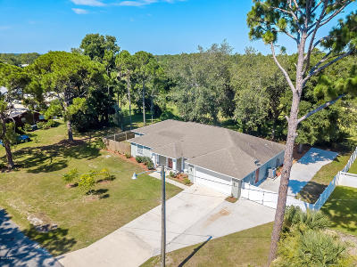Volusia County Single Family Home For Sale: 1198 N Golf Lake Drive