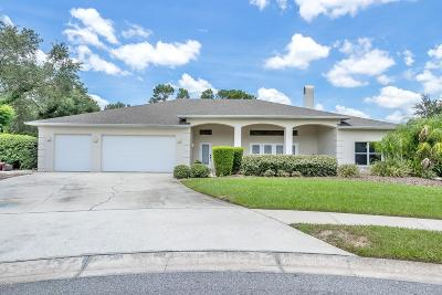 Port Orange Single Family Home For Sale: 6103 Sabal Hammock Circle