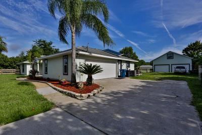 Port Orange Single Family Home For Sale: 300 Quiet Trail Drive