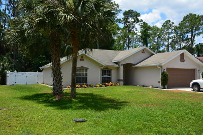 Palm Coast Single Family Home For Sale: 41 Parkway Drive