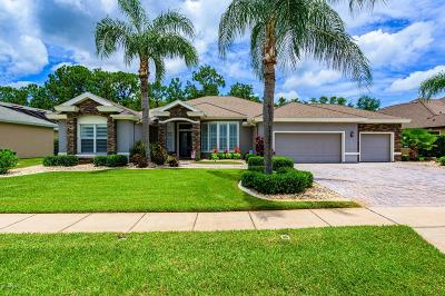 Port Orange Single Family Home For Sale: 6610 Merryvale Lane