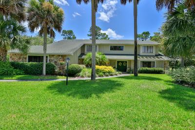 Daytona Beach Single Family Home For Sale: 444 Pelican Bay Drive