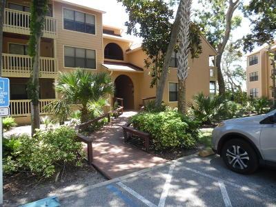 Daytona Beach Condo/Townhouse For Sale: 1401 S Palmetto Avenue #318