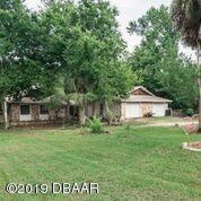 Ormond Beach Single Family Home For Sale: 615 Santa Fe Avenue