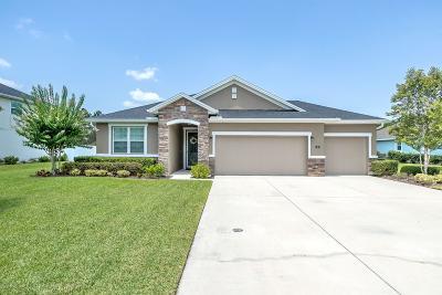 Hunters Ridge Single Family Home For Sale: 22 Abacus Avenue