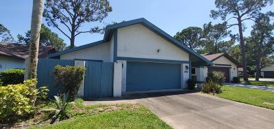 Daytona Beach Single Family Home For Sale: 101 Sea Island Circle