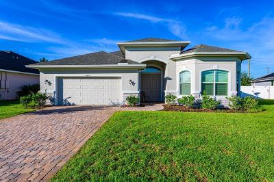 Port Orange Single Family Home For Sale: 6844 Vintage Lane